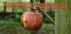 * How to make a delicious Applesauce