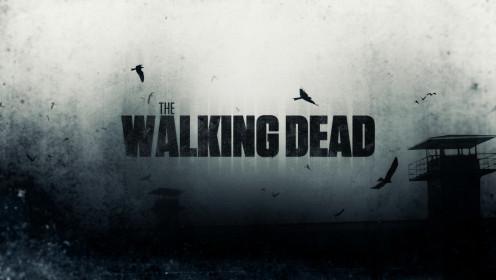 AMC's The Walking Dead Season Episodes Online Behavioral Analysis