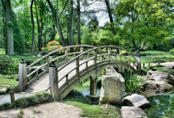 The Basics Of A Traditional Japanese Garden Design