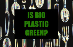 Biodegradable Plastics: Are They Worth It?