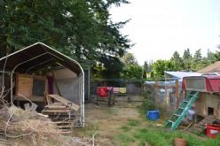Making Money as an Urban Farmer