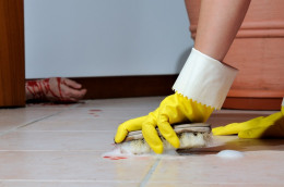 Dealing with blood stains... but only small accidents!!!