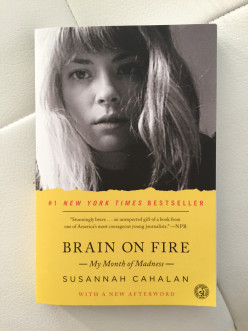 Book Review: Brain On Fire