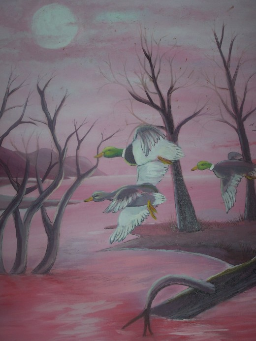 Inspirational wild birds...