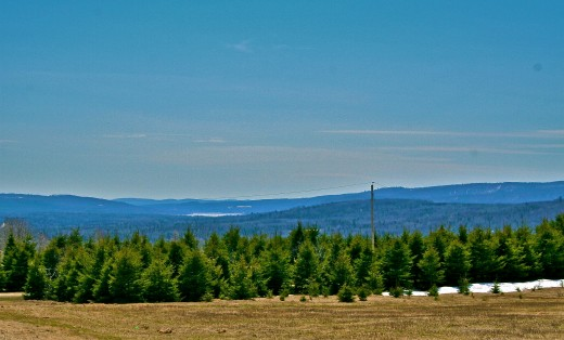 A shot of the hills and mountains of Northern Maine