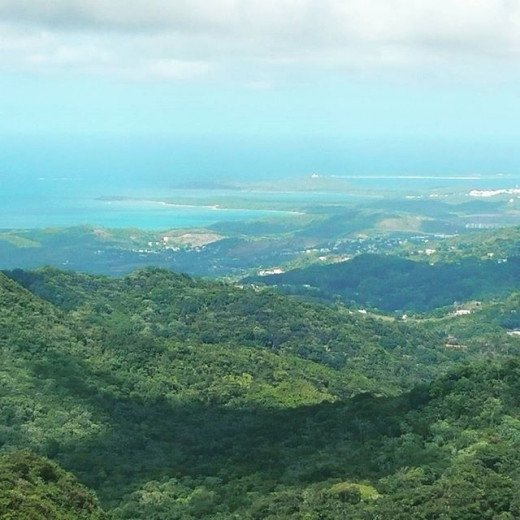 Puerto Rican beauty at its finest. Taken from the top of the old tower in the Yunque national Rain forest.