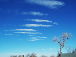Saucers or clouds...