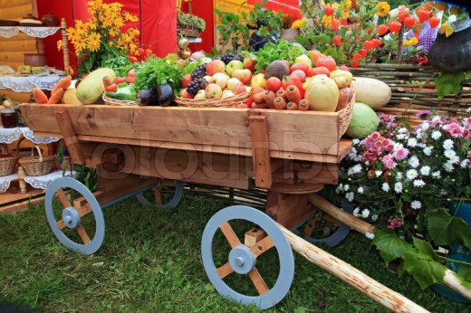 Our Cart Should Be Full of Good Fruit