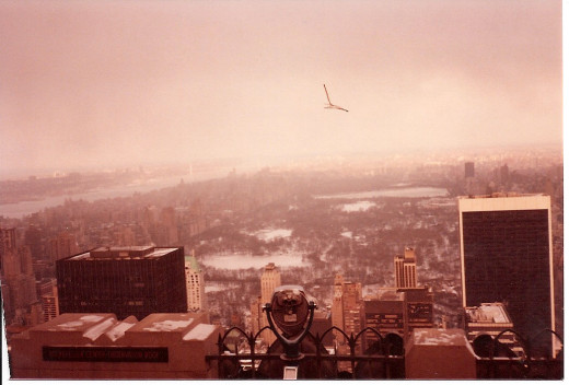 New York from the RCA Building, 1983.