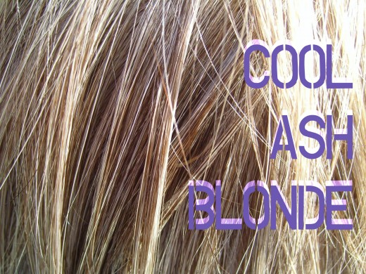 How To Use Wella Toners And Developer For Ash Blonde Hair