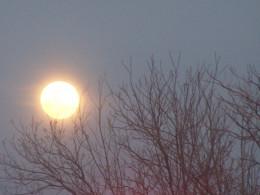 Bright orb of light...