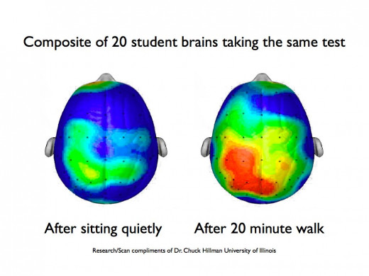 This is your brain on exercise.