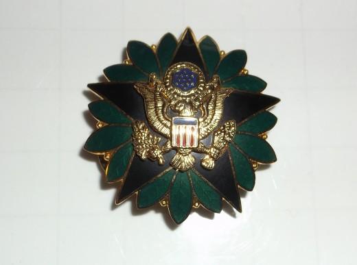 Medical command insignia