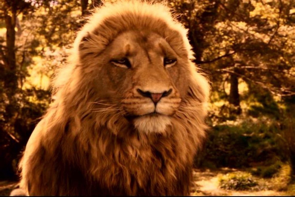 chronicles of narnia essay Prince caspian, which is the second book in the chronicles of narnia, involve a battle between good and evil, and much of it parallels the evil of colonization.