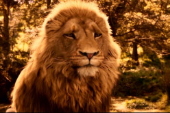 The Themes of Love and Sacrifice in C.S. Lewis' 'Narnia: The Lion, the Witch and the Wardrobe'