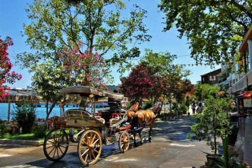 Horse Cart Ride in Princess Islands