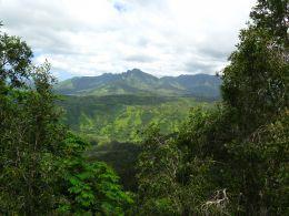 Beautiful mountain views in Kauai.
