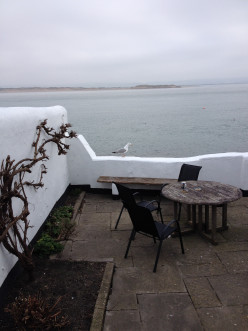 A picture from our holiday in Appledore which is the background to Are We There Yet?