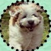 rivermonster profile image