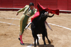Like a Red Rag to a Bull: Meaning and Relevance