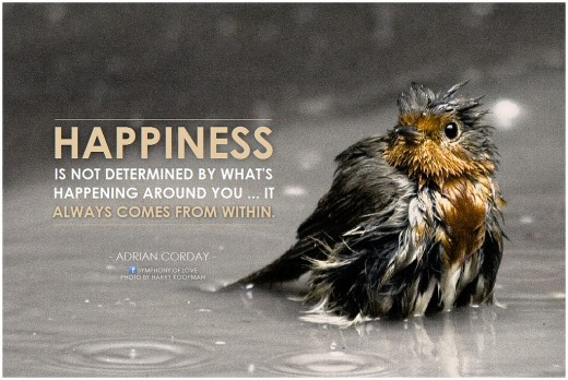Happiness come from within.