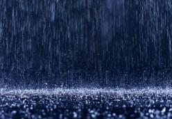 Utilize rainwater