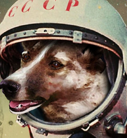Laika, a dog that became the first living being into space.