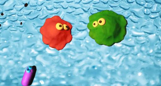 Jim & Bob, Bacteria Swimming by