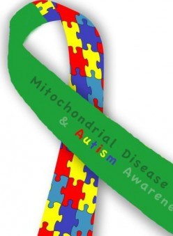 Mitochondrial Disease Awareness Week 2015 Part 2; It Can't Just Be Autism?