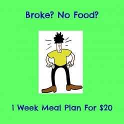 Broke? No Food? 1 Week Meal Plan for $20