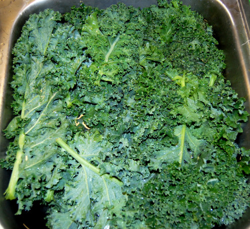 Organic Kale: Nutrition in the Sink