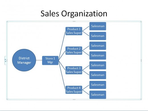 Example of a Sales Team Organization