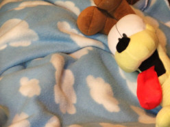 Custom Made Fleece Blankets are Thoughtful Gifts