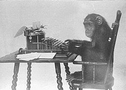 The monkey evolved to type the manuscripts. It didn't just randomly happen.