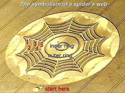 Spider's Web, what does it mean?