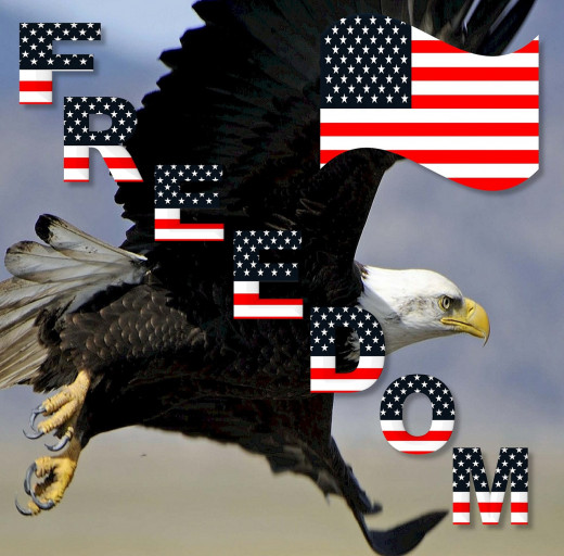 Freedom, Bald Eagle, Patriotic
