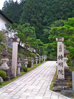 A path in Koyasan begging to be explored (c) A. Harrison