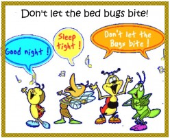 How to get rid of BEDBUGS.