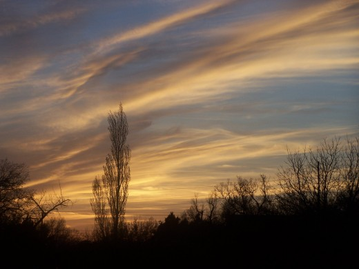 "Autumn""s dawning..."