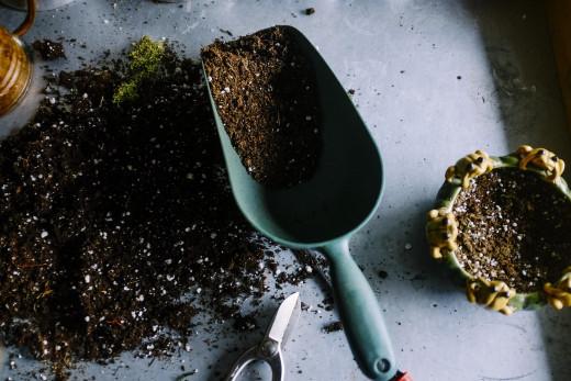 Garden shovel with soil.