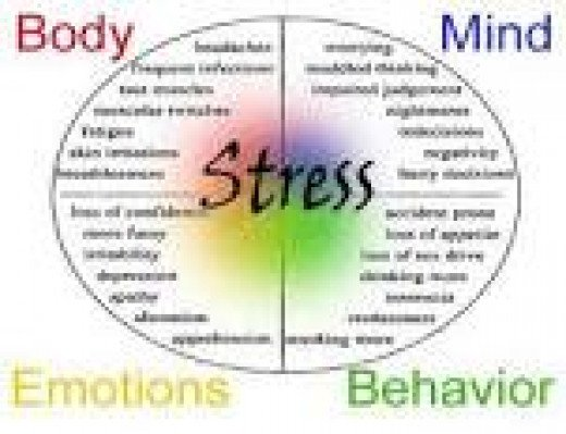 Stress affects the best parts of our body making use to feel drained and empty.