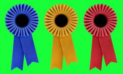 Have you been successful entering any writing contests in recent years?