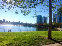 Top 5 Things to do in Vancouver BC