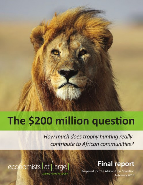 Picture of front cover, THE $200 MILLION QUESTION ... by Economists at Large (2013).