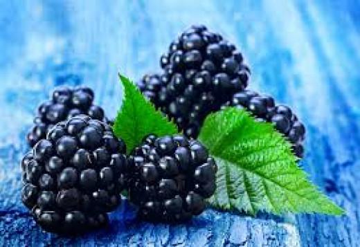 Dark berries help with memory