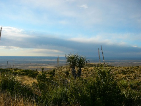 The area surrounding Carlsbad Caverns