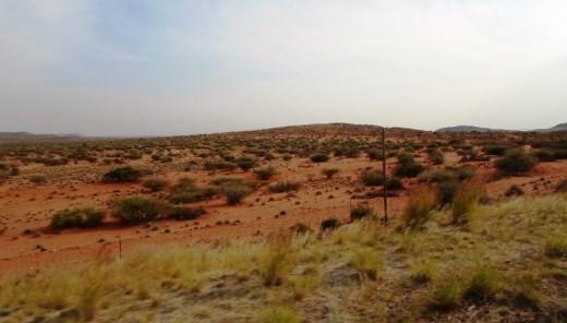 Kalahari Desert © Martie Coetser