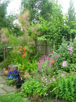More Money-Saving Gardening Tips - Part 3