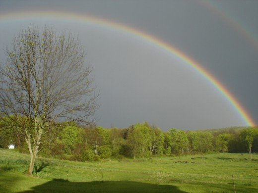 ...and it shall be for the sign of the covenant between Me and the earth. Genesis 9:13