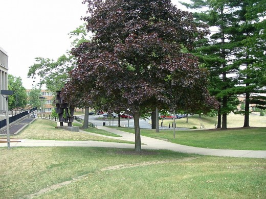 Some trees, planted in memoriam, may have been moved to preserve the original view of the National Guard.